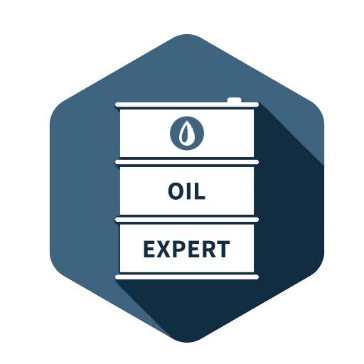 logo oilexpert 2021